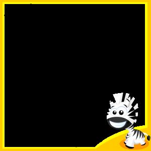 ramki_zebra
