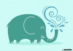elephant_o
