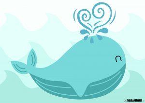 whale_o